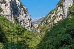 Gola nel Alpes-Maritimes Immagine Stock Libera da Diritti