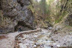 Gola scenica di Martuljek nel parco nazionale di Triglav in Julian Alps in Slovenia Fotografia Stock