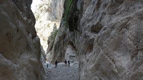 Gola Su Gorropu klyfta, Sardinia Royaltyfria Bilder