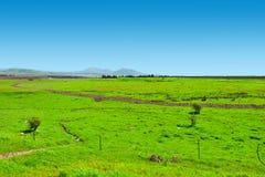 Golan Heights Stockbild