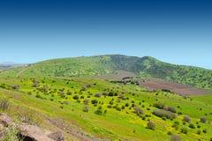 Golan Heights Fotografia de Stock