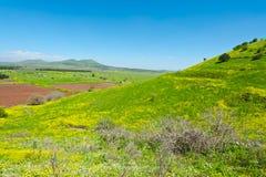 Golan Heights Lizenzfreies Stockbild