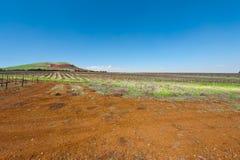 Golan Heights Lizenzfreie Stockbilder