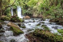 Golan Heights Baniasnatuurreservaat Het Natuurreservaat van de Hermonstroom, Israël Royalty-vrije Stock Afbeeldingen