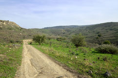 Golan Heights-Landschaft, Israel Lizenzfreies Stockfoto