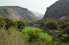 Golan Heights landskap, Israel Arkivbild