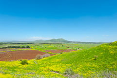 Golan Heights Stock Photos