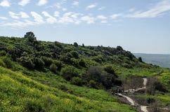 Golan Heights. Royalty Free Stock Photo