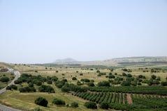 Golanhöhen Stockbild