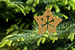 Gold Advent, Christmas ornament Royalty Free Stock Photos
