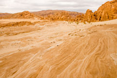 Gold arid desert landscape Sinai, Egypt. Gold arid desert landscape on Sinai, Egypt Stock Image