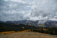 Gold Aspens and a Wasatch View Stock Photos