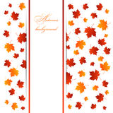 Gold autumn banner Royalty Free Stock Photo