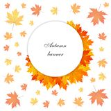 Gold autumn banner Stock Photo