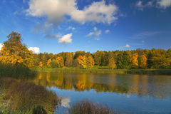 Gold autumn and blue sky Royalty Free Stock Photography