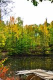 Gold autumn and forest lake Royalty Free Stock Photos