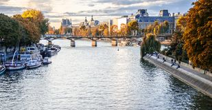 Gold autumn in Paris royalty free stock images