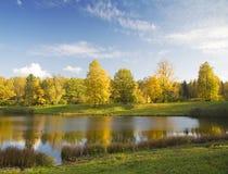 Gold Autumn Under Blue Sky Stock Image