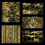 Gold backgrounds  Royalty Free Stock Image
