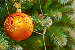 Gold ball hanging on a Christmas tree. The Golden ball on the Christmas tree Royalty Free Stock Images