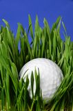 Gold Ball in Ruff. Hand and golf ball in the ruff grass Royalty Free Stock Photos