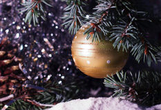 Gold ball toy decorations on tree Stock Photos