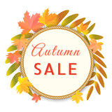 Gold banner for autumn sale with maple, rowan leaves. Vector illustration Royalty Free Stock Images