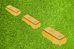 Gold bars in green grass Royalty Free Stock Images