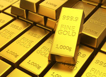 Gold bars in rows.  Stock Photo