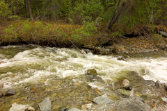 A gold-bearing creek in northern british columbia. Rushing water at spruce creek near atlin, canada stock image