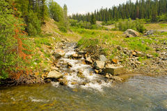 A gold-bearing creek in northern canada Royalty Free Stock Image