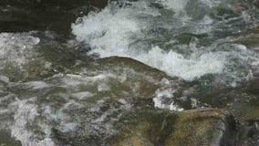 A gold-bearing creek in the yukon territories stock video footage