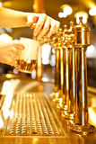 Gold beer Royalty Free Stock Photo