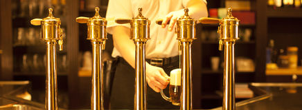 Gold beer taps. Gold beer in the hand and beer taps Stock Photography