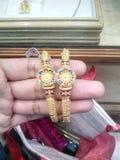 Gold Bengal Lizenzfreie Stockbilder