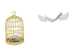 Gold birdcage and dollars fly away. Left a cage, there are a lot of dollars. Dollars fly away to the right. Financial concepts Stock Image