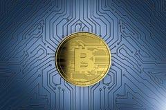 Gold-bitcoin auf Leiterplatte Stockfoto