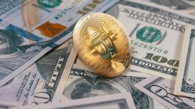 Gold Bitcoin Coin BTC Rotate, Twist, Swirling, Spinning and Falls on the Table with Dollars. Slow Motion. Gold Bitcoin Coin BTC Rotate, Twist, Swirling, Spinning stock video footage