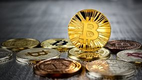 Gold bitcoin coin. Cryptocurrency physical gold bitcoin coin on bitcoins. Money concept Stock Photos