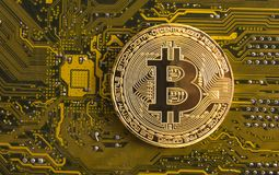 Gold bitcoin concept - computer circuit board with bitcoin processor. And microchips. Electronic currency, Internet finance Royalty Free Stock Image