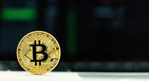 Gold bitcoin cryptocurrency. With a latop computer Stock Photo