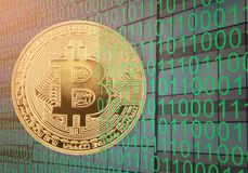 Gold bitcoin on digital binary number background. Stock Photography