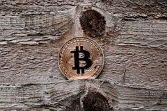 Gold-bitcoin Münze stockfoto