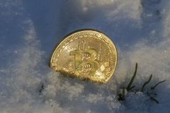 A Large Gold Bitcoin Token in snow. A gold Bitcoin token in the snow Stock Images