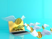 Gold bitcoin with wing and smartphone.Financial growth concept.3. D rendering  illustration Stock Photography