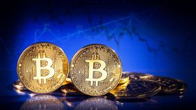 Gold bitcoins. On a blue background Stock Photo