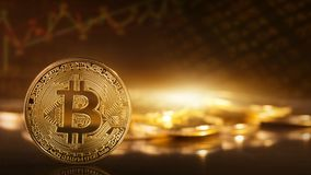 Gold bitcoins. On a yellow background Stock Photos
