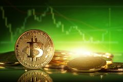 Gold bitcoins. On a green background Stock Photography