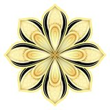 Gold and Black Beautiful Decorative Ornate Mandala Royalty Free Stock Images