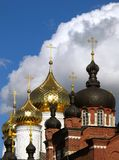 Gold and black domes. Royalty Free Stock Photos